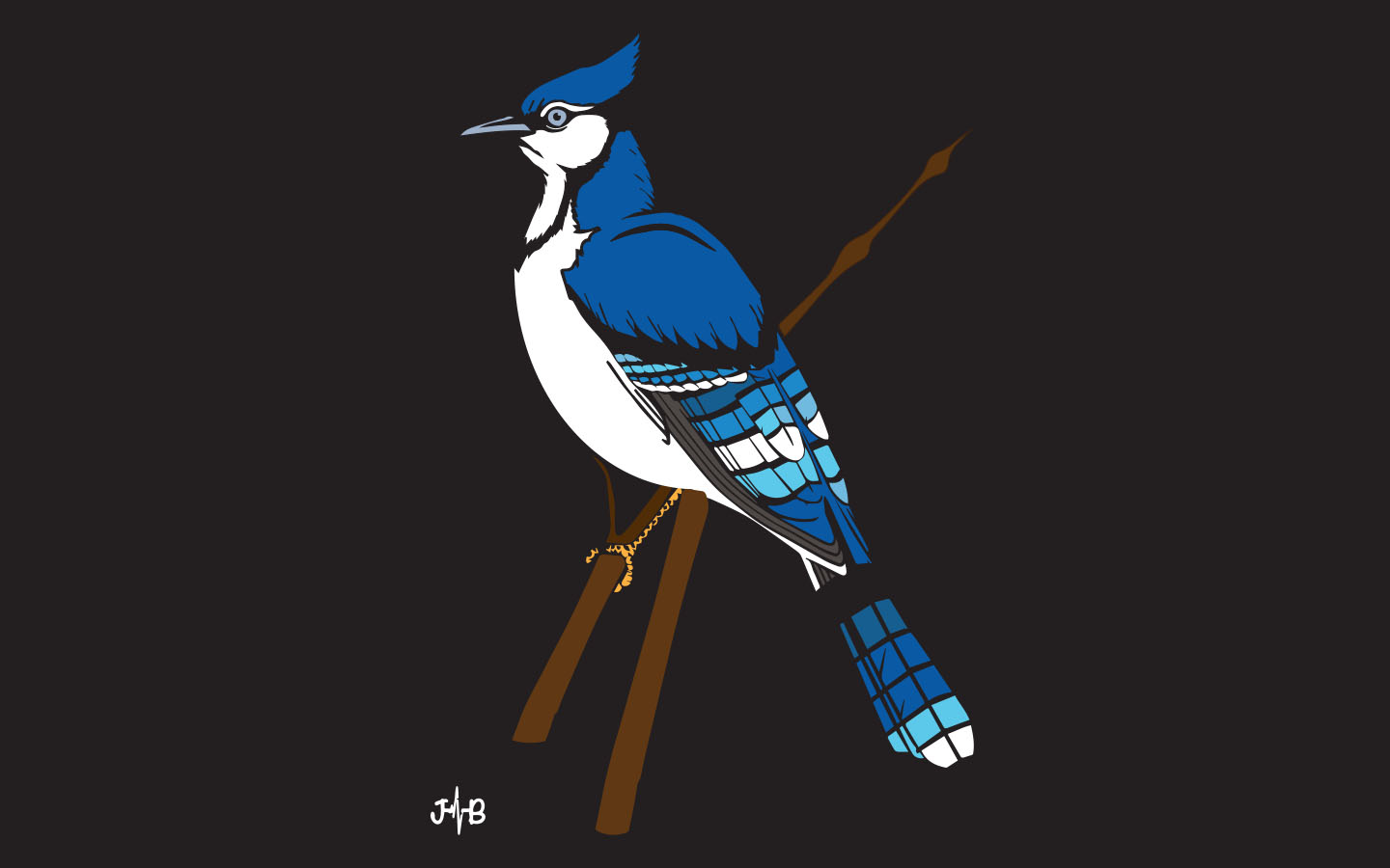 Blue Jay Graphic Design avialable in High quality printed Artworks are avialable