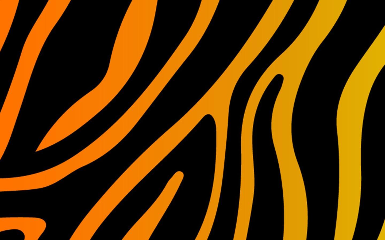 Zesty Zebra - graphic design Uganda